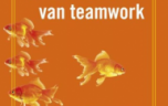 14. De 5 frustraties van teamwork